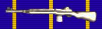 Weapons Expert Award