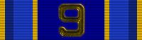 UAF Veteran (9 Years)