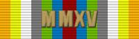 MMXV Ribbon